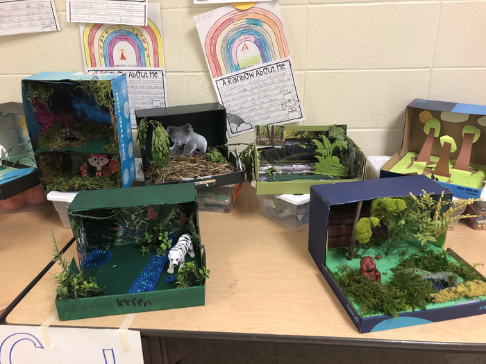 1st Grade Dioramas on display